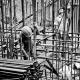worker-2633918_1920